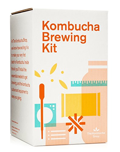 The 3 Best Kombucha Starter Kit in 2020 - Top Picks & Reviews