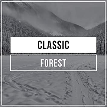 Classic Forest, Vol. 2