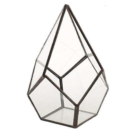 LOVIVER Rhombus Form Hanging Glass Geometrische Terrarium Box Sukkulenten Luft Pflanze Fall - Farbe1, 12x12x17cm