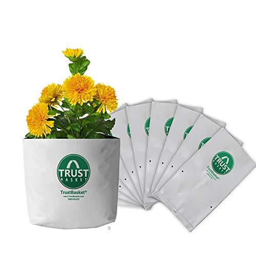 Trust Basket - Bolsas de Polietileno para Cultivo (estabilizadas contra Rayos UV, 10 Unidades, 20 cm de Largo x 20 cm de Ancho x 35 cm de Alto)