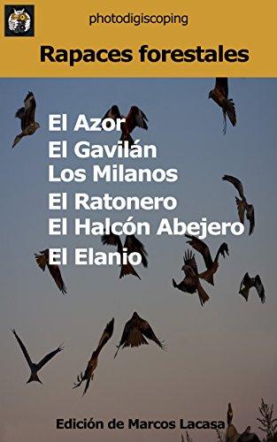 Las Rapaces Forestales (El libro de las rapaces nº 13) eBook: Lacasa, Marcos: Amazon.es: Tienda Kindle