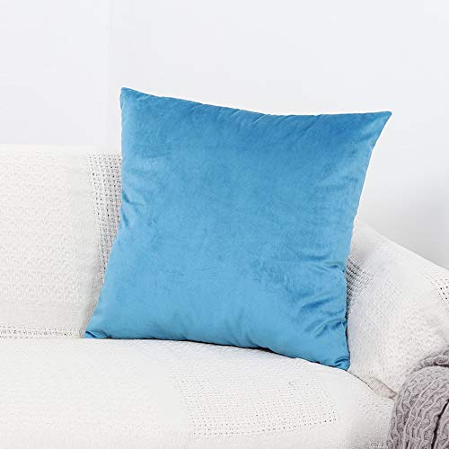 GYROHOME Pack of 2 Velvet Soft Soild Decorative Rectangle Square Throw Pillow Covers Cushion Case for Sofa Bedroom Car (Sky Blue, 12'x20')