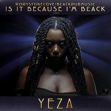 Is It Because I'm Black (Remix)