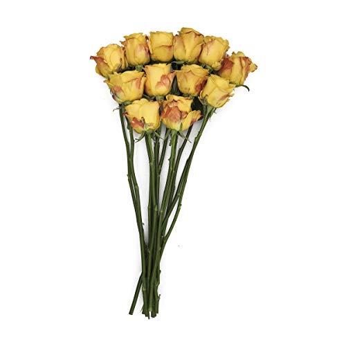 Cut Flowers Rose 12 Stems 60Cm Whole Trade Guarantee, 1 Each