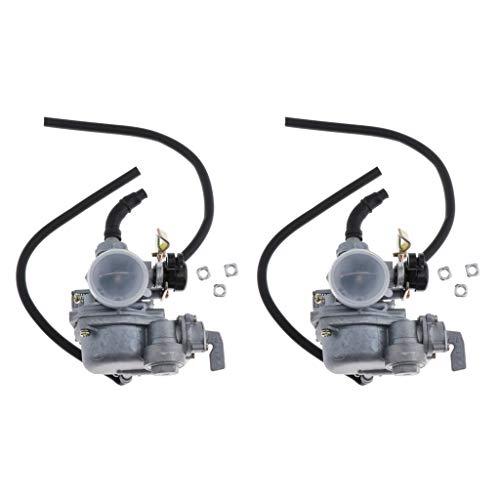 Amuzocity 2x PZ19 Conjunto de Carburador de Diámetro de Admisión de 19 Mm para DY100 CD110