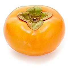 国内産 富有柿 1個