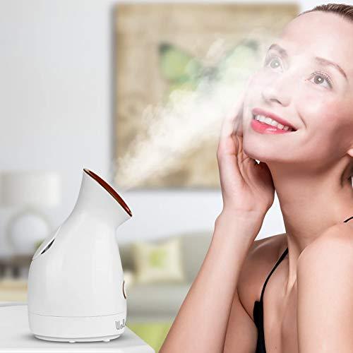 Facial Steamer Spa Facial Steamer Warm Mist Wolady Face Steamer Face Humidifier Sprayer Nano Ionic Facial Steamer Moisturizing Cleaning Pores for Women Men Moisturizing Cleansing Pores, with Skin Kit