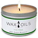 Wax and Oils Soy Wax Aromatherapy Scented Candles (Tea Tree) 8 Ounces. Single