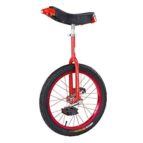 AHAI YU Blaue 18/16-Zoll-Rad-Einräder für Kinder/Jungen/Mädchen (13.11.16.01.18 Jahre alt), 24-Zoll Erwachsene/Trainer/Männliche Balance Radfahren Fahrrad, Outdoor-Fitness-Übung
