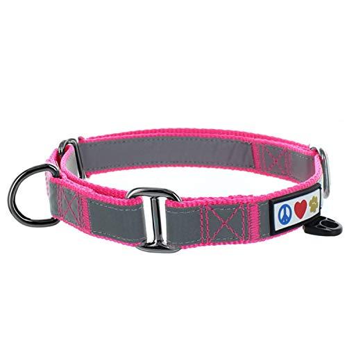 Pawtitas Collar de Perro Martingale Reflectante para obediencia Talla Pequeño Color Rosa