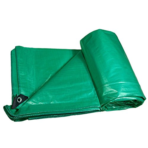 ZEMIN Bâche Protection Couverture Transparente Étanche Écran Solaire Tente Drap Toit Poids Léger Isolation Polyester, Vert, 550G / M², 5 Tailles Disponibles (Color : Green, Size : 10X12M)