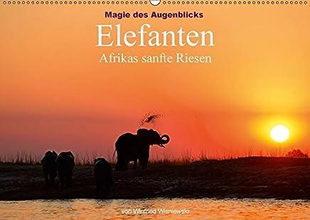 Magie des Augenblicks - Elefanten - Afrikas sanfte Riesen (Wandkalender 2018 DIN A2 quer): Eindrucksvolle Bilder von den größten Landtieren der Erde, ... Wisniewski (Monatskalender, 14 Seiten )