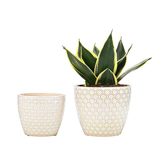 UooMay Ceramic Flower Pots Plants Containers - 6.5 and 5.5 Inch Planter Pot with Drainage Hole for Succulents,Flower and Plants, Indoor or Outdoor,Set of 2 (White)