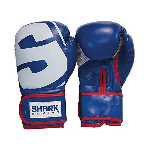 Guante de Boxeo SKF (16oz)