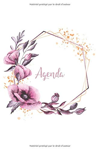 Agenda: 19 novembre au 20 décembre - 1 semaine en un coup...