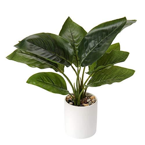 Briful Künstliche Pflanzen Kunstpflanze Unechte Pflanzen Tropische Zimmerpflanze Faux Monstera im Topf für Hausgarten Büro Schreibtisch Duschraum Dekoration