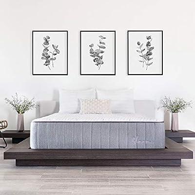 Brooklyn Bedding Bloom 14-Inch Talalay Latex Hybrid Mattress with Organic Cotton Cover, Queen Medium