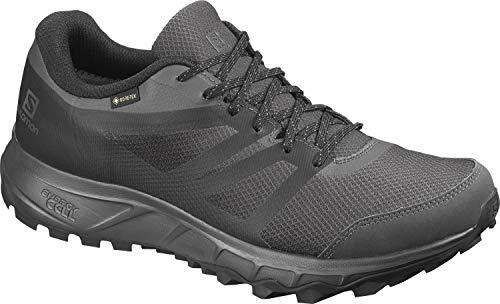 Salomon Herren Trail Running Schuhe, TRAILSTER 2 GTX, Farbe: grau (Phantom/Ebony/Black) Größe: EU 43 1/3