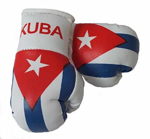 Mini Boxhandschuhe KUBA/CUBA, 1 Paar (2 Stück) Miniboxhandschuhe z. B. für Auto-Innenspiegel