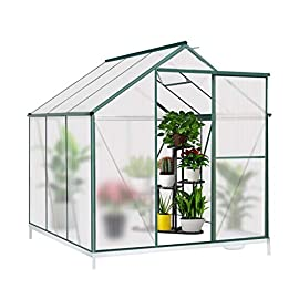 JULY'S SONG Greenhouse,Polycarbonate Walk-in Plant Greenhouse with Window for Winter,Garden Green House Kit for Backyard/Outdoor Use(6'x6') 7 【EXTEND THE GROWING SEASON】Perfect for a first-time or seasoned home gardener, JULY'S SONG walk-in greenhouses protect plant against rough weather. You can make sure that your plants are healthy and happy all year round. 【STURDY & DURABLE】This DIY Greenhouse Kit is made of 4mm twinwall UV/wind resistant polycarbonate panels and thickened premium aluminum frame,all this together with heavy-duty galvanized base help provide solid support for your entire plant nursery. 【MULTI-FUNCTION DESIGN】The greenhouse for outdoor has sliding doors for easy access, roof vent for effortless ventilation, and rain gutters for effective drainage of water and snow.