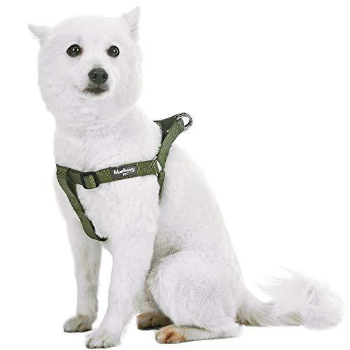 Blueberry Pet Step-In Geschirre Klassisch Einfarbig Hundegeschirr mit Zugentlastung Verstellbar Langlebig - Militärgrün Nylon 42-54cm Brust, Passender Hundehalsband & Hundeleinen erhältlich Separate