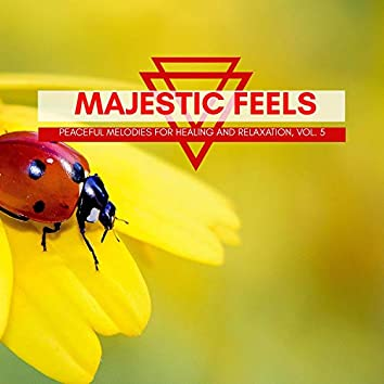 Majestic Feels - Peaceful Melodies For Healing And Relaxation, Vol. 5