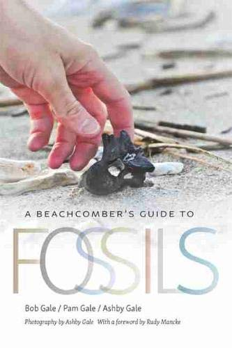 A Beachcomber's Guide to Fossils...