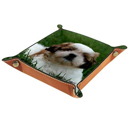 ZDL Shih Tzu Dog PuppyStorage Box Caja de almacenamiento organizador para llaves, teléfono, moneda, cartera, relojes, etc. 20,5 x 20,5