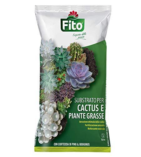 Fito SSUBSTRATO Cactus Terriccio 100% Naturale e Piante Grasse