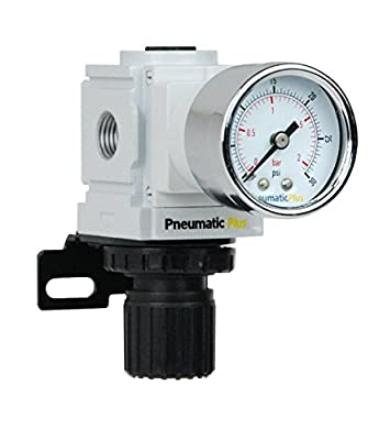 "PneumaticPlus PPR2-N02BG-2 Miniature Air Pressure Regulator 1/4"" NPT - Gauge, Bracket, Instrument Pressure (3-30 PSI) by PneumaticPlus"