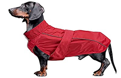 Dog Coats Waterproof, Perfect for Dachshund Sausage, Puppy Winter Jacket with Padded Fleece Lining, Outdoor Dog Clothing with Adjustable Bands and Underbelly Protection - Red - S