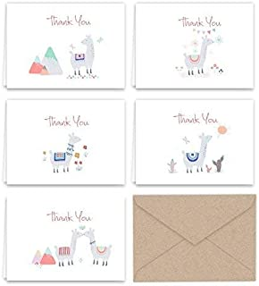 Paper Frenzy Llama Thank You Note Cards & Kraft Envelopes - 25 pack