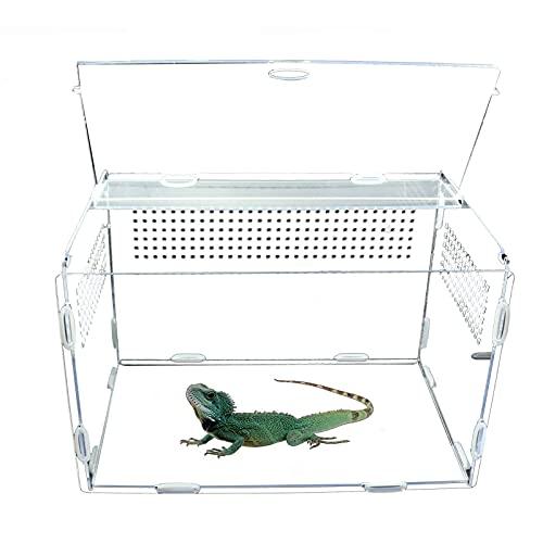 adgbd Reptilienzuchtbox Reptile Clear Terrarium Habitat Acryl-Vollansichts-Fütterungsbox, Tragbare Reptilien-Zuchtbox Mit Kleinen Luftlöchern Für Insekten Spinnen Eidechsen Frosch Schildkröten Raupen