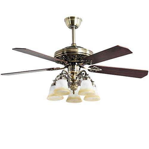 Indoor Ceiling Fan Light Fixtures