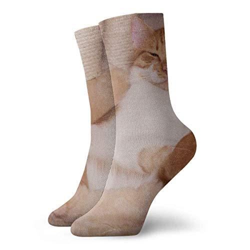Calcetines de algodón para hombre con diseño de patas de Kratzbaum