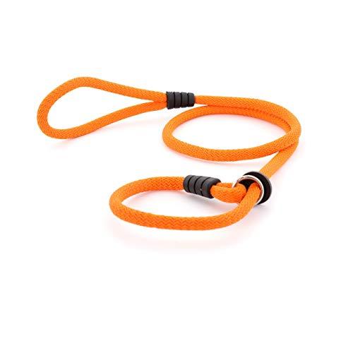 Mr.Doggy Correa de Perro para Adiestramiento - Correa de Entrenamiento para Perros Medianos y Grandes - Collar y Cuerda con Regulador - 150 cm x 12mm (Naranja)