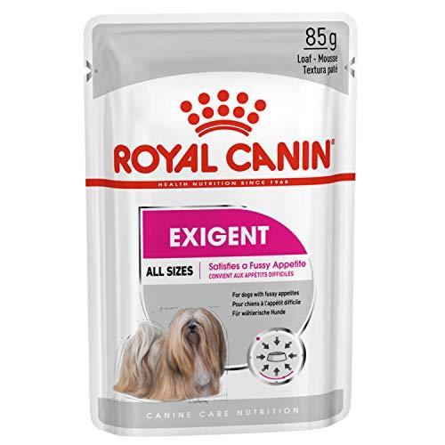 ROYAL CANIN Alimento húmedo Exigent para Perros con Apetito Exquisito, Textura Paté, Caja Completa 12 Sobres x 85 gr ✅