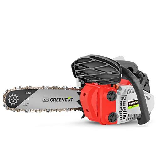 GREENCUT GS250X-12 - Motosierra Poda de gasolina 25,4cc y 1,4cv con espada de 12'' Arranque Easy-Start, Sistema Anti-Vibración, Incluye protector de espada