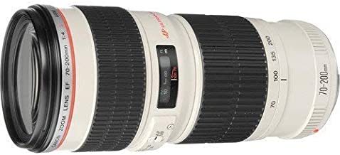 Canon EF 70-200mm f/4L USM Telephoto Zoom Lens for Canon SLR Cameras International Version (No Warranty)