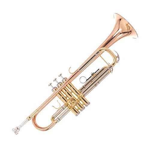 LVSSY-Trompeta BB Estándar de Latón,Trompeta Profesional Estudiante Principiante con Estuche Rígido Guantes Boquilla 7C Y Kit de Limpieza de Trompeta (Cobre de Fósforo)
