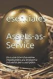 Assets-as-Service: Un curso intensivo como introducción a la economía industrial por suscripción