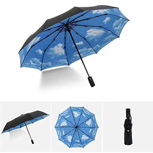 DXQDXQ Fold Windproof 3 Folding Automatic Umbrella Auto Open/Close Rainproof Portable Light Durable Umbrellas Rain 10 Ribs for Men Women Gift Kids Travel Parasol Bag (Color : Sky blue)