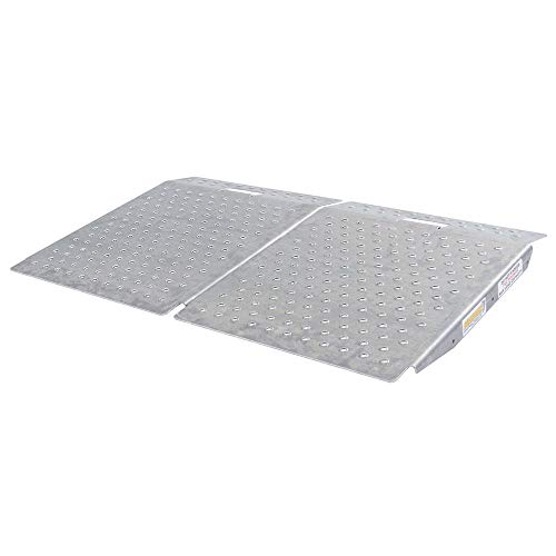 Guardian SR-01-24-24-P-TS6-2 Shed Ramps with Punch Plate Surface