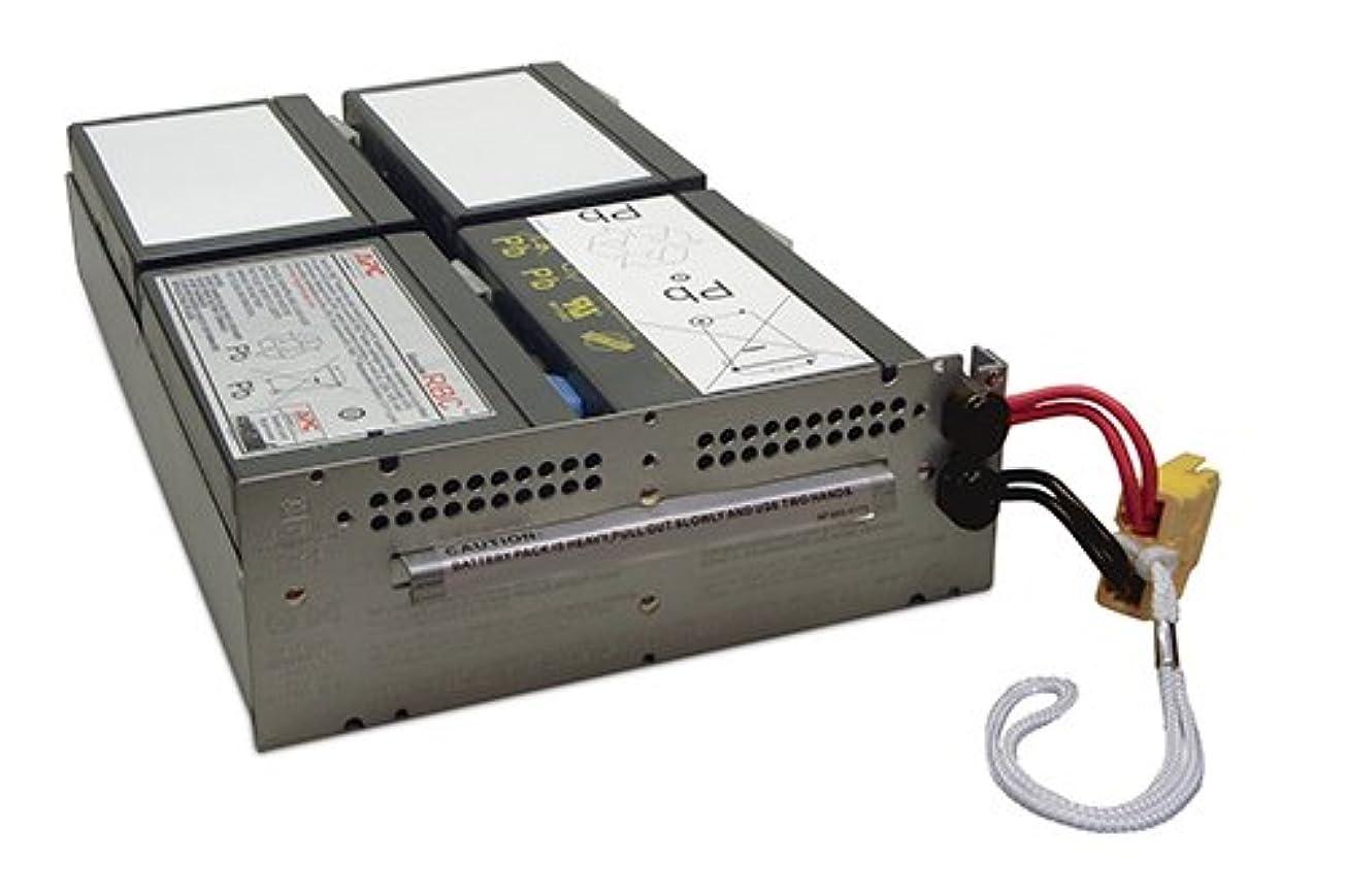 弾丸カリング虫を数えるシュナイダーエレクトリック SMT1500RMJ2U 交換用バッテリキット APCRBC133J
