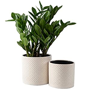 KYY Ceramic Planters Garden Flower Pots 6.5″ and 5.5″ Set of 2 Indoor Outdoor Modern Plant Containers (White Diamond Pattern)