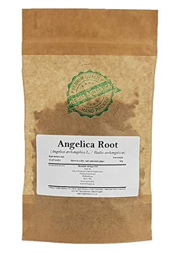 41+M1DODaiL - Angelica Archangelica