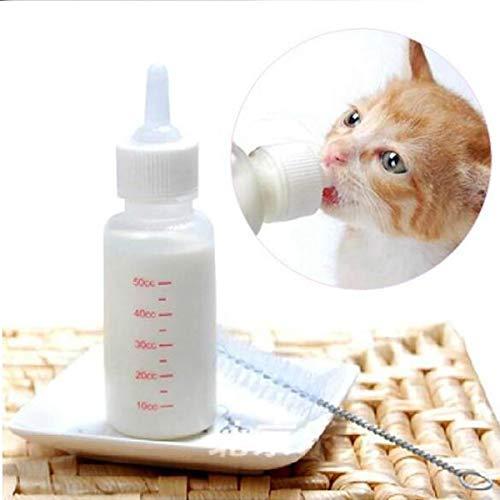 Accessori per allattamento cani