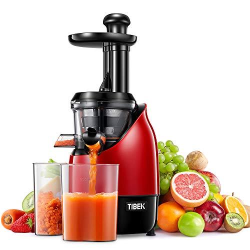Slow Juicer, Edelstahl Entsafter Saftpresse, Entsafter Gemüse und Obst mit Ruhiger Motor, Leicht zu Reinigen, Rückwärtsfunktion(Extra Sieb für Eis und Sorbet - Rezeptbuch)