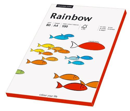 Papyrus 88042477 Druckerpapier Rainbow 80 g/m², A4 100 Blatt intensivrot