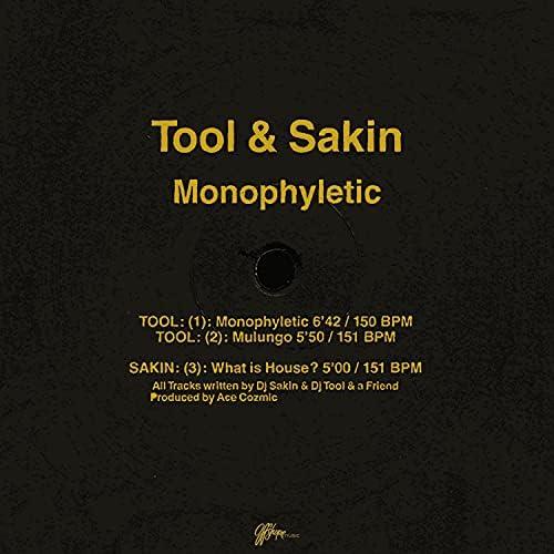 TOOL & DJ Sakin